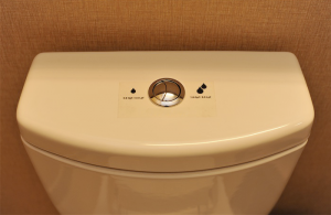 Dual-Flush-Toilet-Cost