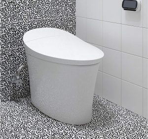 Excellent 5 Best Bidet Toilet Combos 2020 Reviews Buyers Guide Evergreenethics Interior Chair Design Evergreenethicsorg