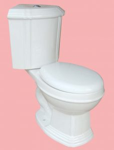 Surprising 7 Best Corner Toilets 2020 Reviews Complete Buyers Guide Beatyapartments Chair Design Images Beatyapartmentscom