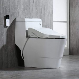 Magnificent 5 Best Bidet Toilet Combos 2020 Reviews Buyers Guide Ncnpc Chair Design For Home Ncnpcorg