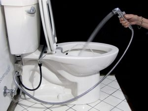 Incredible Wc Bidet Toilet All In One Ncnpc Chair Design For Home Ncnpcorg