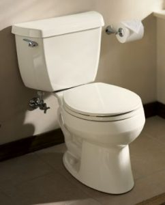 Kohler Wellworth Toilet Review Is It The Best Toilet In