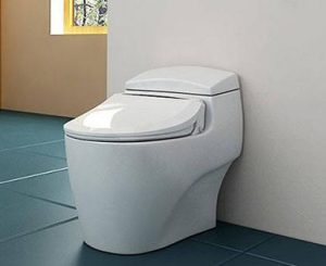 toilets with a bidet