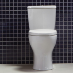 Single Flush vs Dual Flush Toilet
