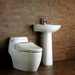 Euroto Luxury Toilet Review