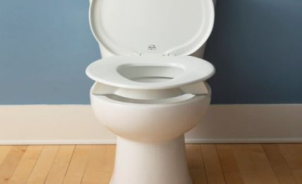 How to Remove a Bemis Toilet Seat